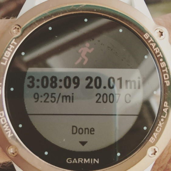 stacy-20-mile-run-garmin